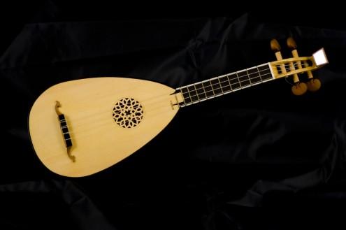 liuteria Bertucci realizza strumenti musicali di musica antica